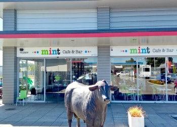 Mint Cafe Bar Bulls