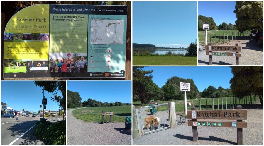 Kowhai Park Dog Park Levin.jpg