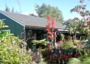 Pahiatua Garden Centre